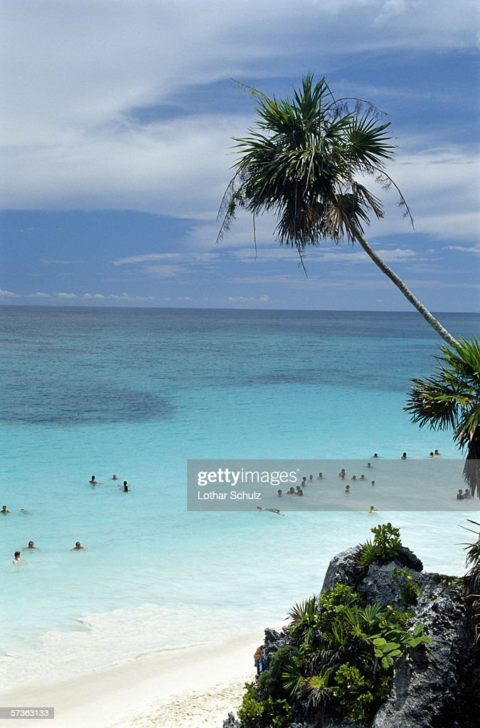 People swimming on beach with rock and palm tree, Yucatan, Mexico : Stock Photo