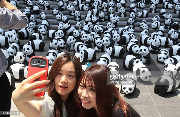 People take a 'selfie' photograph near Pandas on May 23 2015 in Seoul South Korea The project now newly renamed as '1600 PANDAS' is a collaboration...