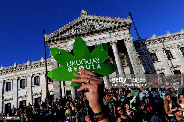 People take part in a demo for the legalization of marijuana in front of the Legislative Palace in Montevideo on December 10 as the Senate discusses...