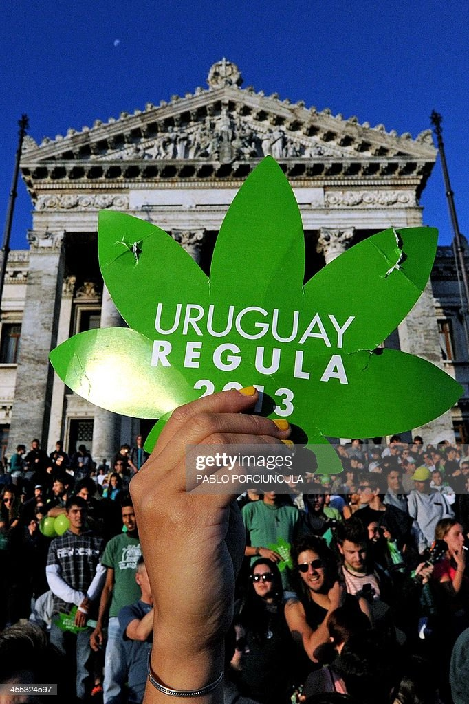People take part in a demo for the legalization of marijuana in front of the Legislative Palace in Montevideo, on December 10, 2013, as the Senate discusses a law on the legalization of marijuana's cultivation and consumption. Uruguays parliament is to vote Tuesday a project that would make the country the first to legalize marijuana, an experiment that seeks to confront drug trafficking. The initiative launched by 78-year-old Uruguayan President Jose Mujica, a former revolutionary leader, would enable the production, distribution and sale of cannabis, self-cultivation and consumer clubs, all under state control. AFP PHOTO/ Pablo PORCIUNCULA
