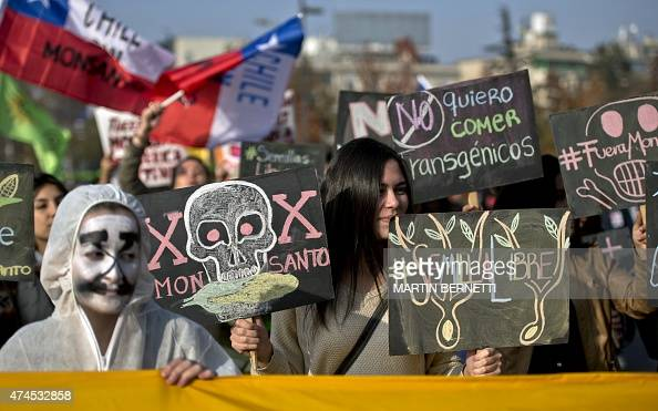 People take part in a march against US agrochemical giant Monsanto on May 23 in Santiago Chile Annual marches against the Monsanto Company grass...