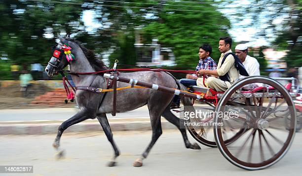 People take part in Horsecart racing on the streets of Sangam City on July 9 2012 in Allahabad India The traditional sport is organized on the every...