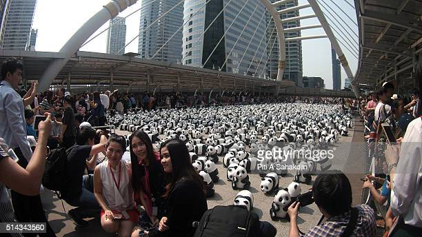 People take photos with papiermache pandas created by French artist Paulo Grangeon as they are displayed at Silom Skybridge Intersection the 1600...