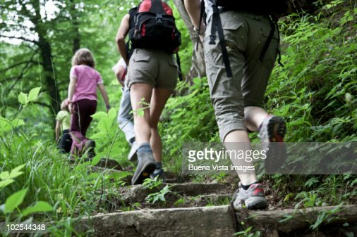 People trekking in a forest : Foto de stock