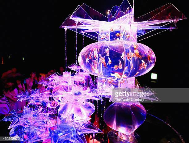 People view Kingyo on display at the 'Eco Edo Nihonbashi Art Aquarium 2014' exhibition at the Nihonbashi Mitsui Hall on July 22 2014 in Tokyo Japan...