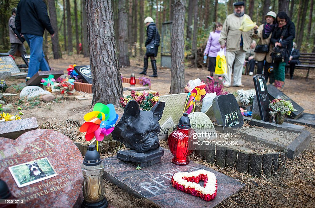 People visit graves of their pets - mainly dogs, at the pet cemetary in Nowy Konik, near Warsaw, on October 7, 2012 on the annual meeting for owners of late pets. The holiday is organized every year on first sunday in October on the model of very popular in Poland All Saints day (November 1) and gather hundreds of people wishing to light a candle for their pets.