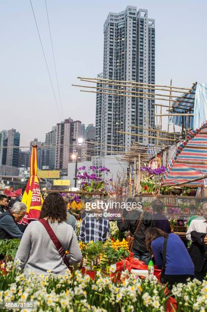 People visit the Flower Market set up for the Lunar New Year as China prepares for the Year of the Horse at Victoria Park on January 30 2014 in Hong...