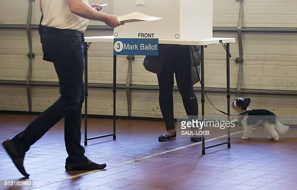 People vote during the Super Tuesday primary voting at a polling place located at Fire Station in Arlington Virginia March 1 2016 Americans began...