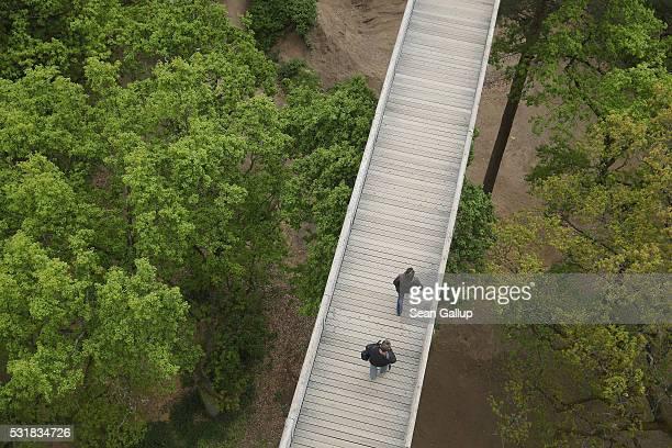 People walk along the 'Baum und Zeit' elevated platform near the ruins of the Beelitzer Heilstaetten sanatorium on May 16 2016 in Beelitz Germany The...