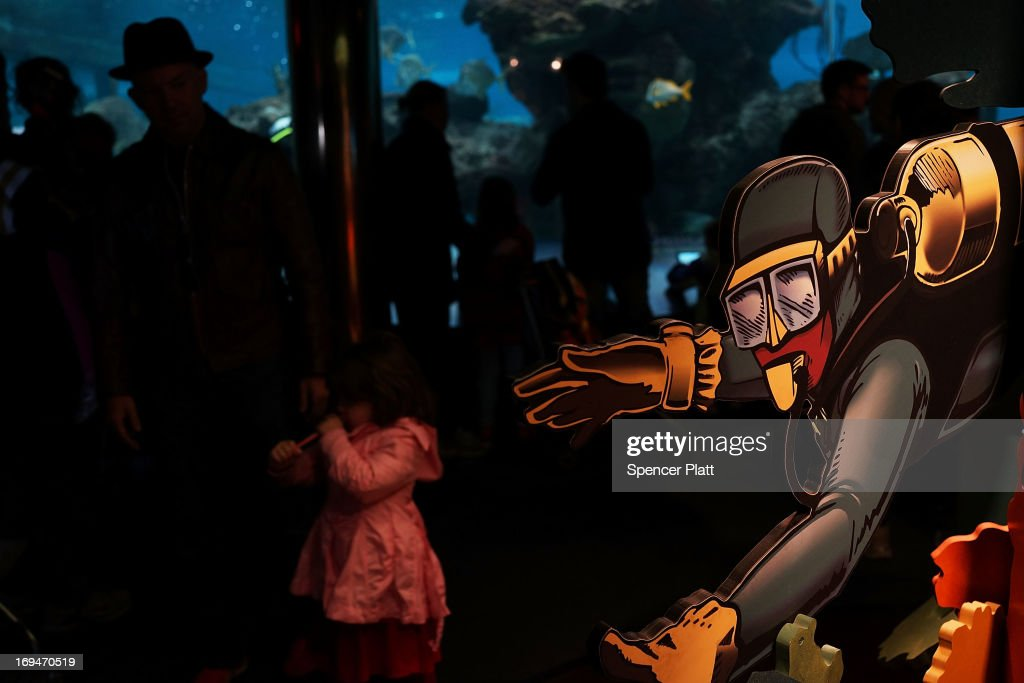 People walk by exotic fish tanks on the first day of the re-opening to the public of the Wildlife Conservation Society New York Aquarium in Coney Island on May 25, 2013 in the Brooklyn borough of New York City. The aquarium was heavily damaged by Hurricane Sandy and reopens a day after city beaches re-open to the public. More than 90 percent of the aquarium's sea life survived the storm.