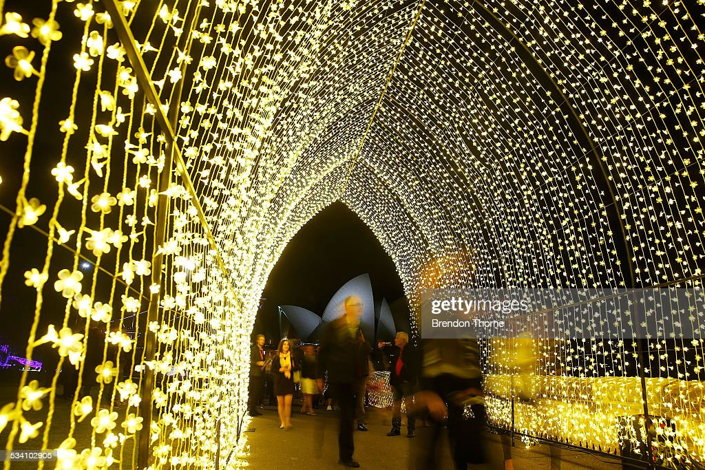 People walk inside the 'Cathedral of Light' at The Royal Botanic Gardens on May 25, 2016 in Sydney, Australia. Held annually, Vivid Sydney is the world's largest festival of light, music and ideas.