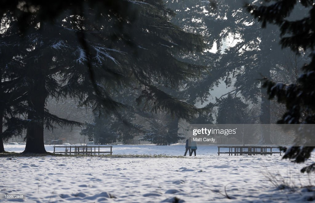 People walk on snow surrounding trees at Westonbirt Aboretum on January 24, 2013 near Tetbury, England. According to forecasters, the UK is set to experience a thaw from the winter weather with rain, higher temperatures and high winds arriving from the south west tomorrow.