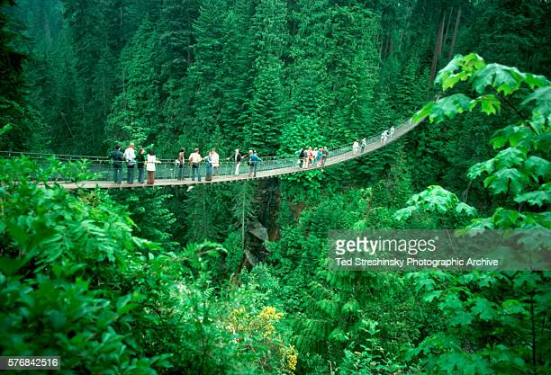 People walk over a suspension bridge over Capilano Canyon in a park in Vancouver British Columbia