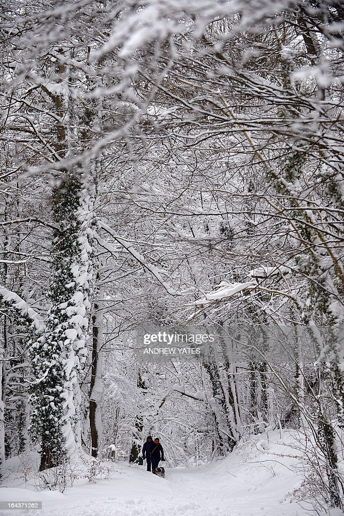 People walk their dog in the snow in Ruthing, North Wales, on March 23, 2013. Heavy unseasonal snow caused fresh disruption in Britain on March 23, leaving tens of thousands of homes without power, shutting airports and causing an international football match to be called off.