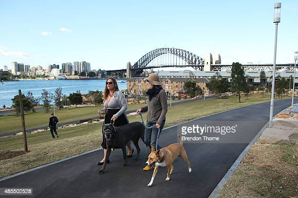 People walk their dogs at Barangaroo Reserve on August 28 2015 in Sydney Australia The park's opening on 23 August 2015 marked the first time...