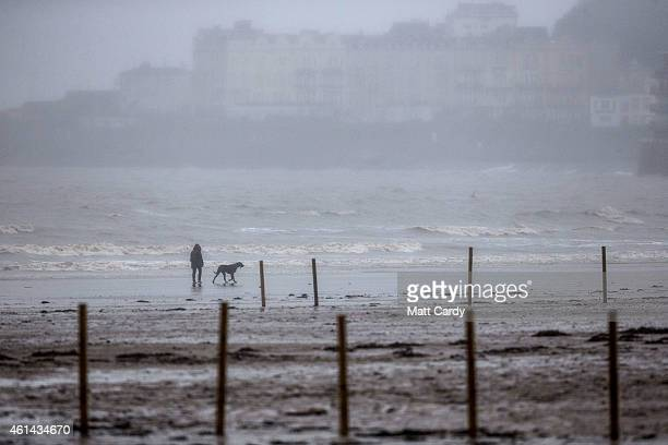 People walk their dogs on the beach on January 12 2015 in WestonSuperMare England Concerns have been raised that the nearby Birnbeck Pier which is...