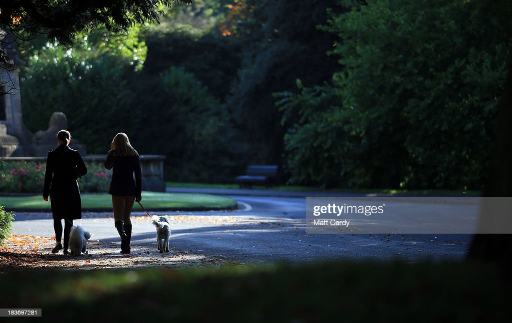 People walk their dogs past fallen leaves as the trees begin to take on their autumn colours in The Royal Victoria Park on October 9, 2013 in Bath, England. Although later than normal, experts at the Forestry Commission are predicting a spectacular autumn this year due to a ideal mix of sunshine and rain which has meant a great growing season for the nations trees, providing perfect conditions for the sugars to build up in the leaves that help them change colour and develop their vibrant autumn hues.