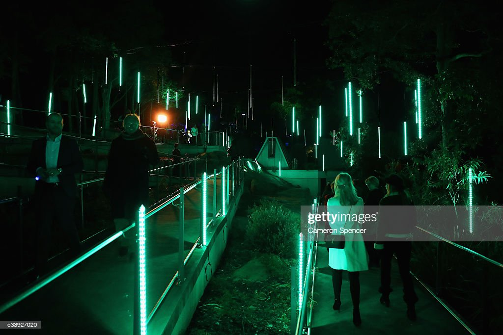 People walk through Taronga Zoo during a media preview of Vivid Sydney illuminated displays at Taronga Zoo on May 24, 2016 in Sydney, Australia. Vivid is lighting up at Taronga Zoo for the first time with ten giant animal sculptures representing critical species the zoo is committed to protecting. Held annually, Vivid Sydney is the world's largest festival of light, music and ideas running for 23 days.