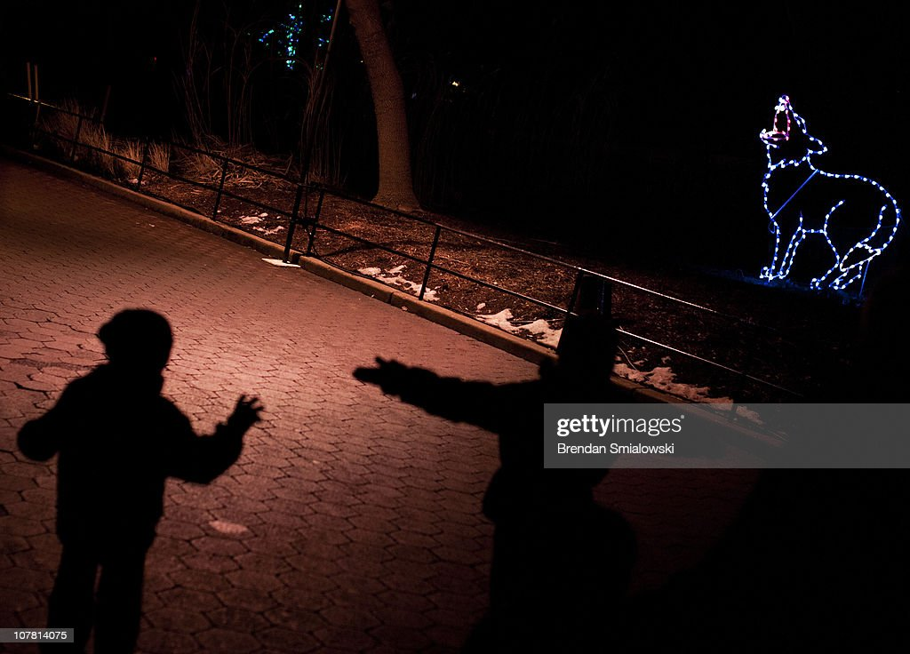 People walk through the Smithsonian's National Zoo December 29, 2010 in Washington, DC. The National Zoo decorated its main walk with holiday lights and other decorations for its yearly Zoo Lights celebration.