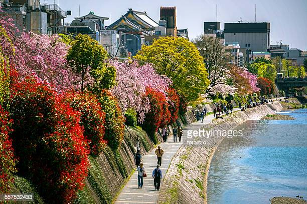 People walking along Kamo River in Spring