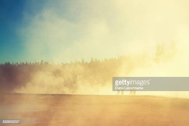 People walking around the Grand Prismatic In Yellowstone National Park
