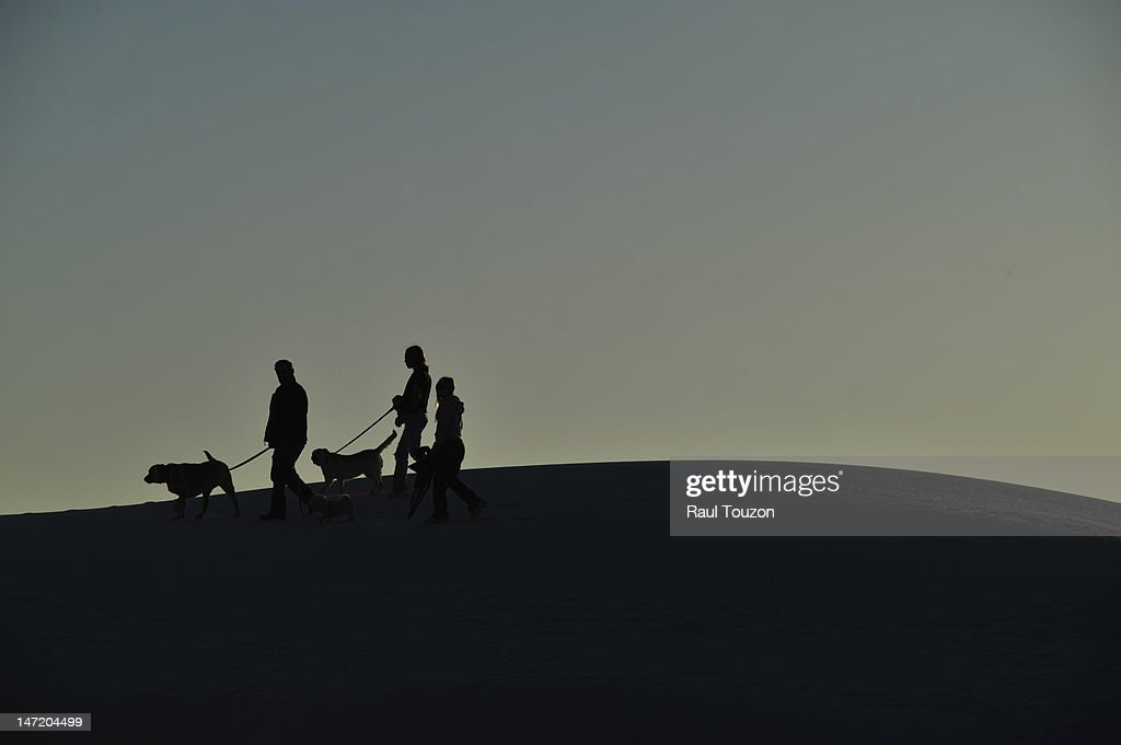 People walking dogs on gypsum sand dunes at Alamogordo. : Stock Photo