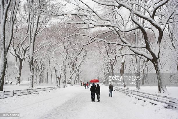 People walking in Central Park in winter