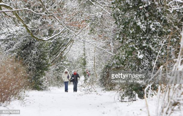 People walking near St Catherine's Hill in Winchester after heavy snowfall