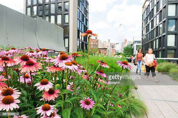 People Walking NYC High Line Park a Summer Travel Destination