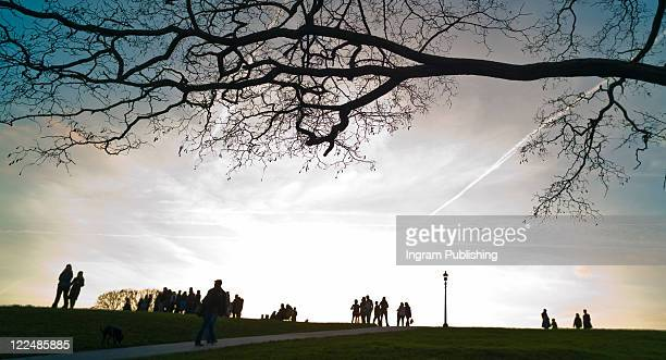 People walking on Primrose Hill, London
