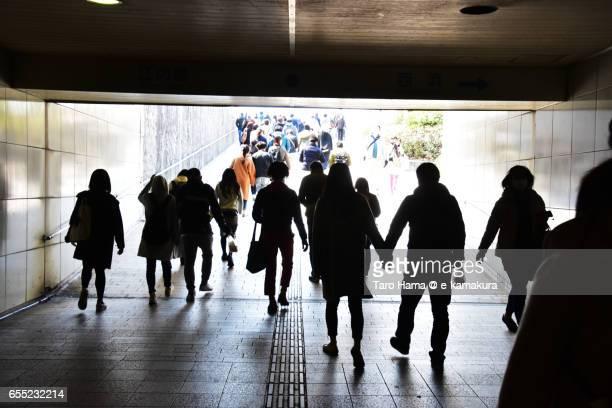 People walking under the bridge
