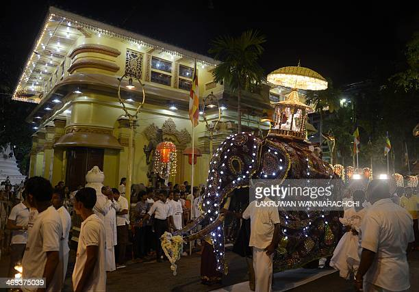 People watch as an elephant carries a casket containing Buddhist relics at the annual Nawam Perahera parade in Colombo on February 14 2014 Some 70...
