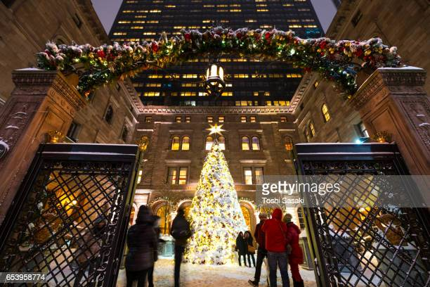 People watch the snowy Christmas tree at New York Palace Hotel at night at Midtown Manhattan. Christmas tree and courtyard are illuminated and surrounded by Snow.