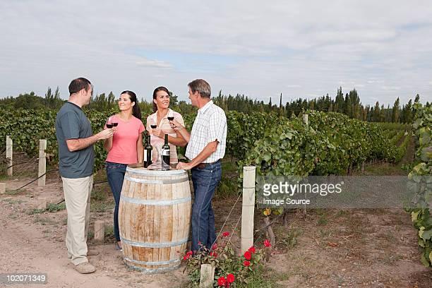 La degustación de vinos de viñedos