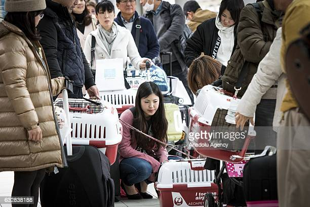 People with their dogs wait for their flight at the airport in Chiba Japan on January 27 2017 Japan Airlines 'wan wan jet tour' allows owners and...
