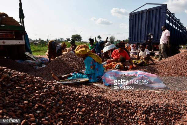 People work at a cocoa sorting centre on March 6 2017 in Sobre Ivory Coast the world's largest cocoa producer will conduct an audit of its sector...
