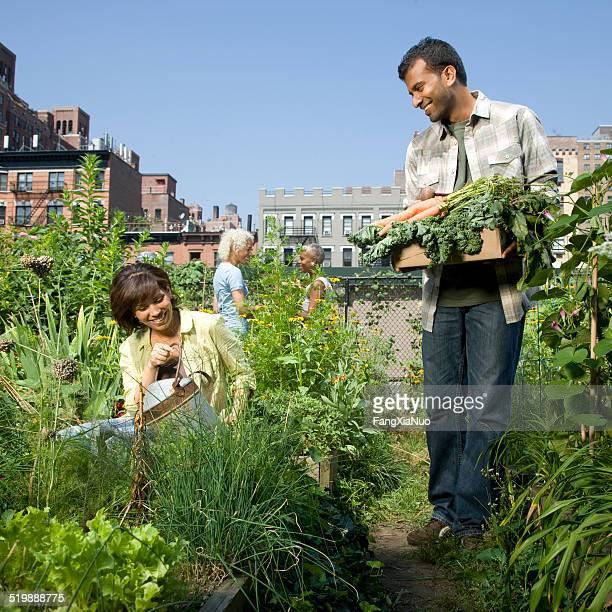 People working in a community garden