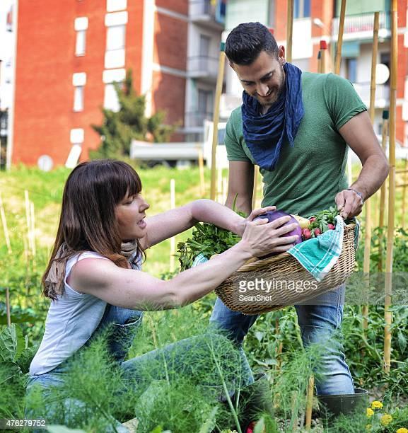 Persone al lavoro in un centro urbano verdure giardino