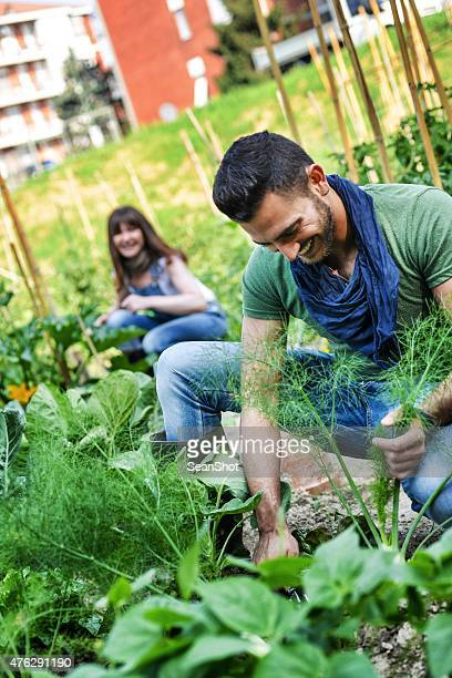People Working in a Urban City Vegetables Garden