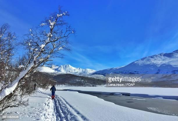 Peoples skiing in Narvik