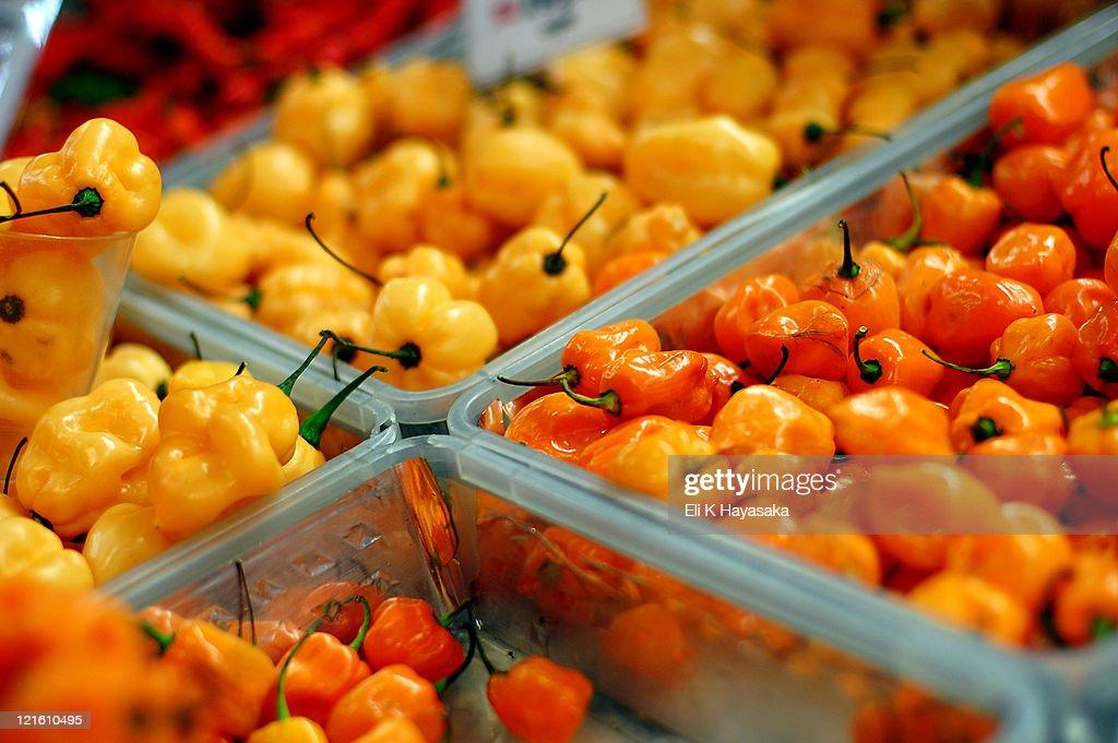 Pepper : Stock Photo
