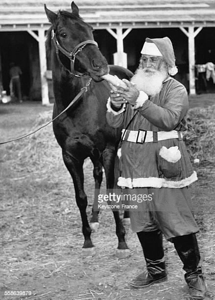 Pere Noel donnant une carotte a un cheval se nommant 'Santa Claus' au 'Santa Claus Handicap' a Miami Floride
