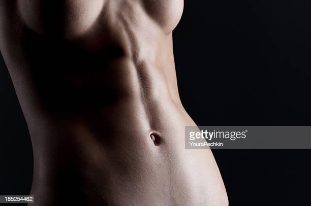 Perfekte die Bauchmuskeln