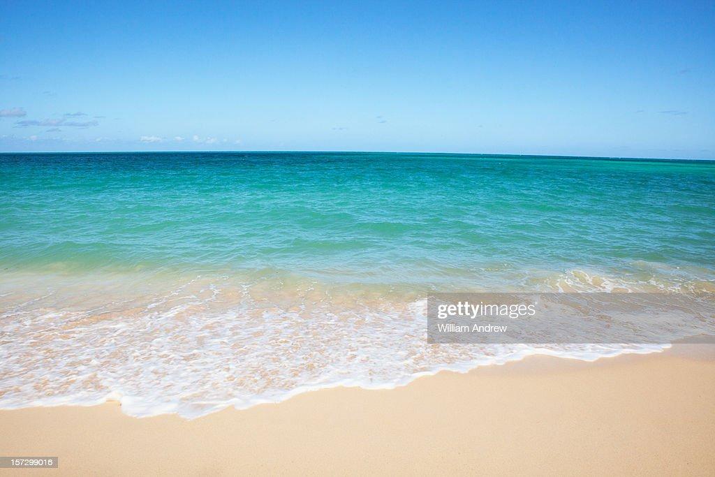 Perfect beach : Stock Photo