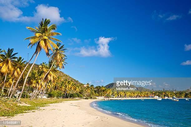 Perfect Caribbean Beach With Blue Sky