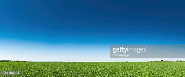 グリーンフィールドにぴったりの夏のビッグブルースカイ