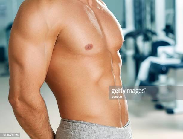 Perfekte Männlicher torso