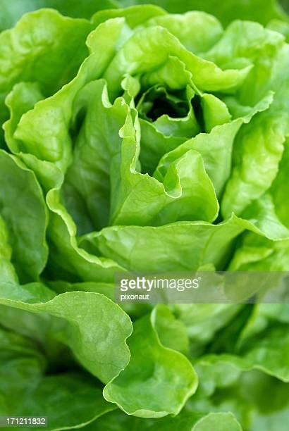 Salade parfait