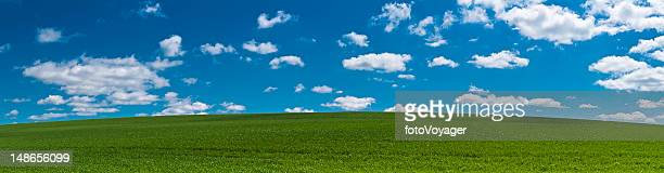Perfect summer landscape background green field hill blue sky panorama