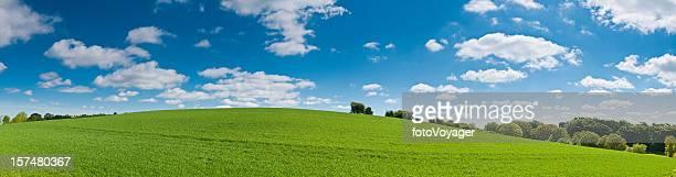 夏にぴったりの鮮やかな背景のパノラマに広がる風景